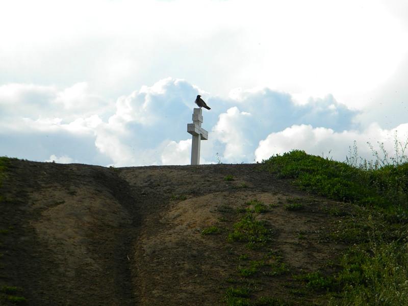 voronanaalex-gore